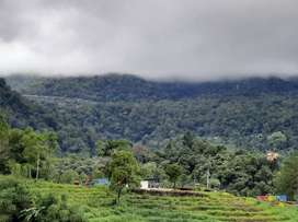 Promo KSB ( Kavlingan Siap Bangun) Tropical Garden Regency Sibolangit
