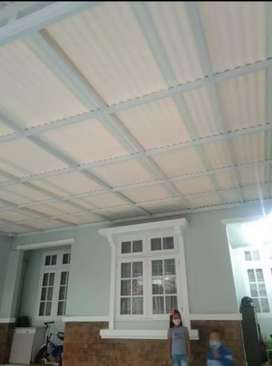 Canopy alderon nc 10021