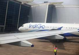 Airlines hiring for ground staff freshers candidates