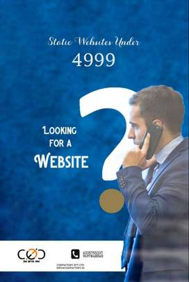 websites and custom softwares