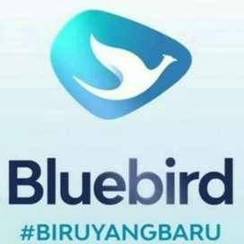 Dibutuhkan sopir Bluebird