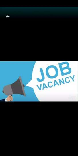 Hiring for office staff (only female)
