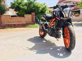 Duke 390 for sale