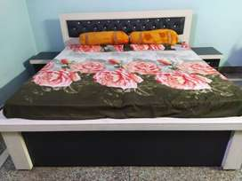 PG FOR RENT IN ROHINI SECTOR -19