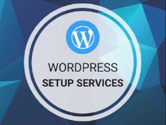 You will get a professional WordPress web design for your business