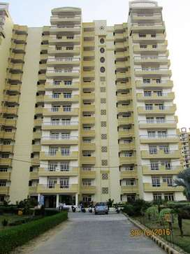 3BKH Flat in Supertech Sports City Meerut/Seperate Serv. Qrt/1825Sq Ft