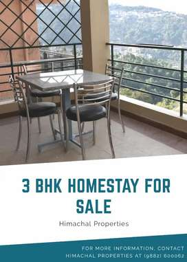 Homestay Building For Sale