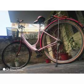 Brand new miss india bicycle