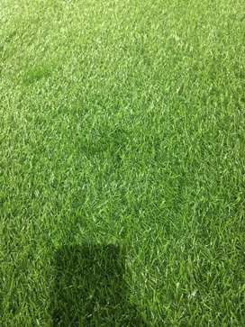 Artificial grass, synthetic grass, fake grass, astro turf