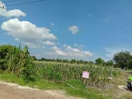 Dijual Tanah 1 Hektare