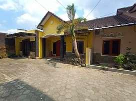 Jual Rumah Edisi Murah Banget Selatan Pasar Kolombo Jalan Kaliurang