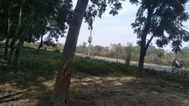 Saste plot dolaturpur dps school se 500 mtr aage near bahadrabad