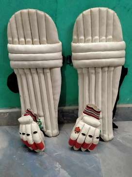 Cricket kit pads and professional gloves