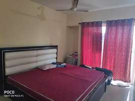 1 bhk full furnished for anyone