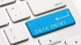 Data Entry proffesional