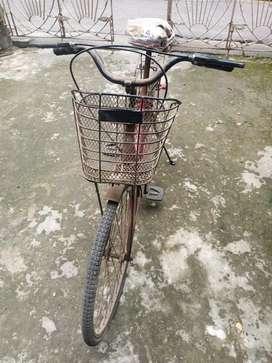 Lady Bird ... Ladies cycle