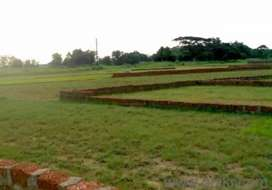 Plots available in Bhubaneswar Nua Gaan near Sum Hospital