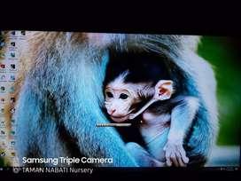 """TV LED LG ULTRA HD/4K Smart TV 43 """"- Type 43UH650T"""