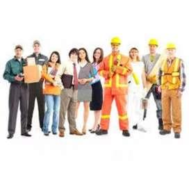 Labour requirements