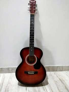Walker Acoustic Guitar