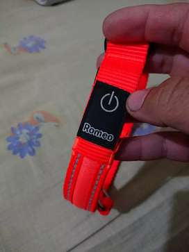 Dog collar with flashing light brand new. Imported