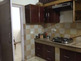 independent fully furnished apartment for rent Opp GIP Mall Noida