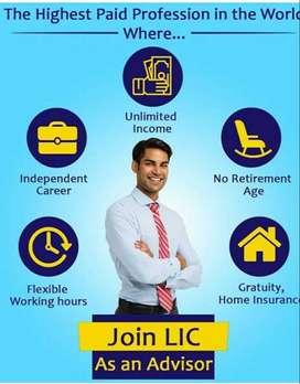 Insurance Advisor For LIC