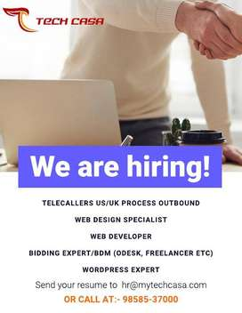Bidding Portal Expert work on Freelancer, Odesk,Fiverr etc.