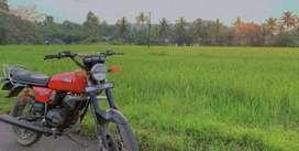 Yamaha RX100.