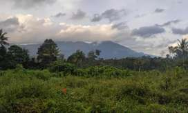 1 acre land for sale in Munnar suitable for constructing resorts