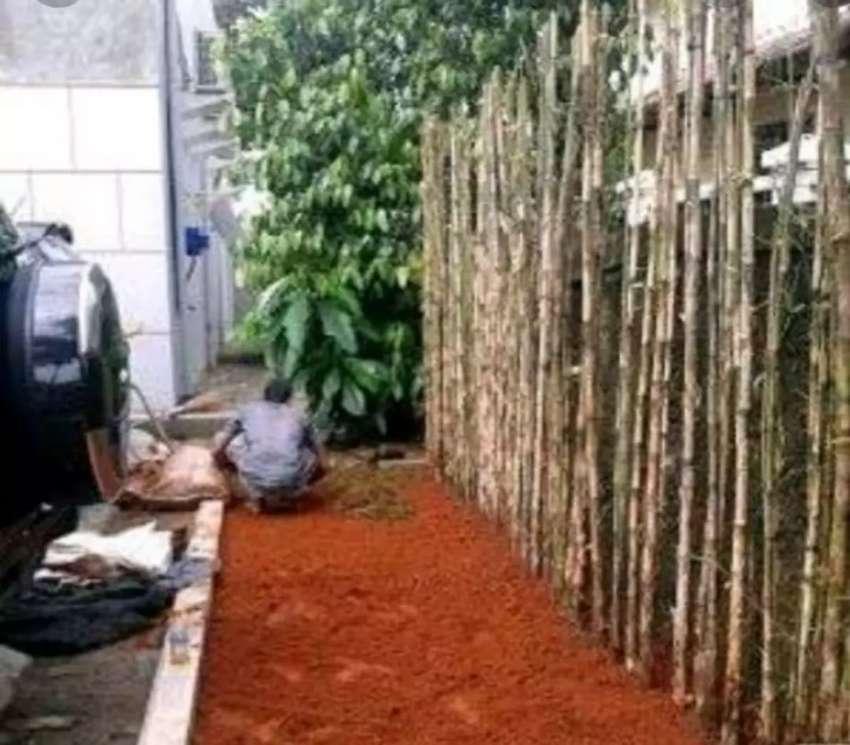 Bambu hias jepang jogja 0