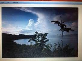 Tanah 49.650 m2 Los Pantai di Pantai Sekotong, Lombok Barat - NTB