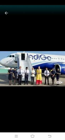 Indigo airlines job available in your location