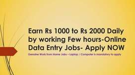 Online Data Entry Jobs without Investment- Daily /Weekly salary Payout
