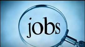 Required boy or girl for electronic showroom