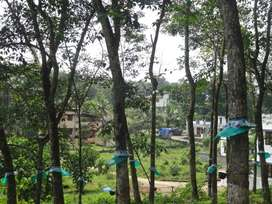 2 acre cent Land for Sale at Mulanthuruthy Ernakulam