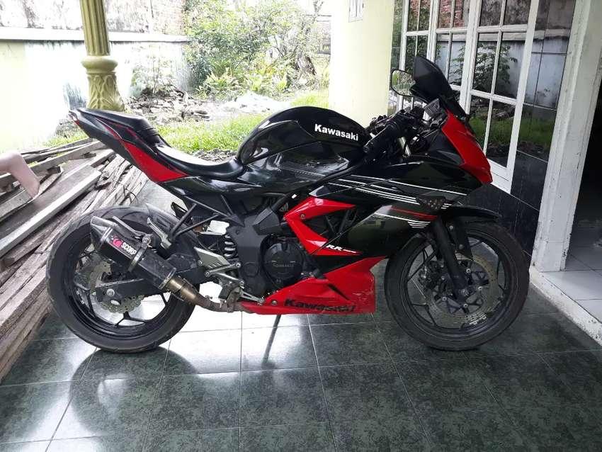 Kawasaki Ninja 250 Mono 0