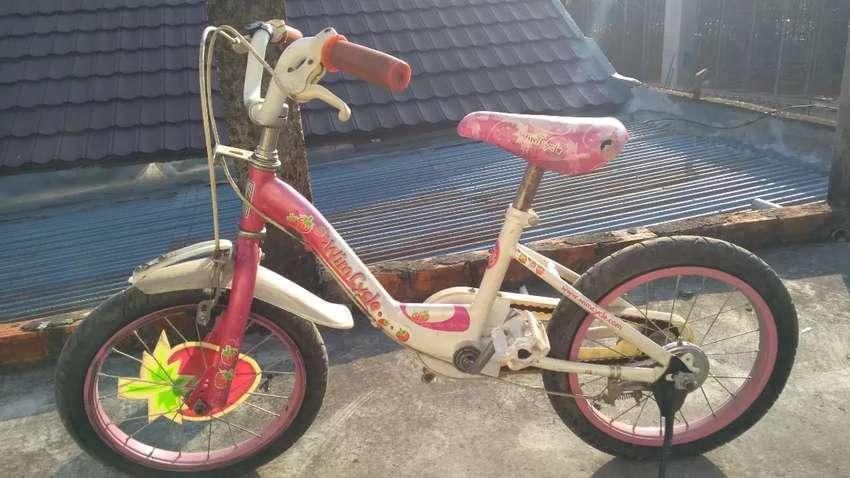Sepeda anak wim cycle ukuran 16 0