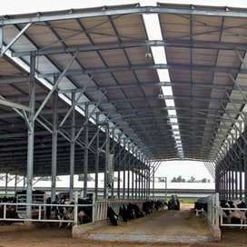 Dairy Farm Shed & Steel Shade by Mechanical Engineer