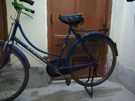 4 year old Bicycle
