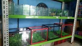 Aquarium ikan hias minimalis