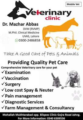 Cats and dogs specialist