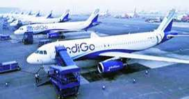 jobs for indigo  Male / Female, Fresher / Experience Both can apply fo