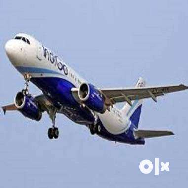 AIRPORT GROUND STAFF 2019  Ground Staff Job vacancy in Airlines Job fr 0