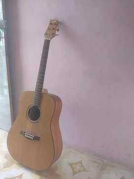 Guitar. Brand- ashton