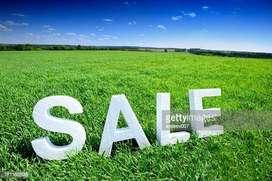Plot for sale near karukachal