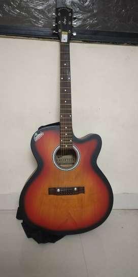 Guitar -(Signature)  - 1 month old