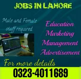 Job for Males/ females/ student