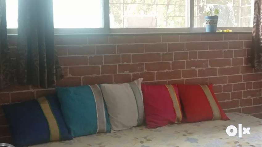 5 cushions in excellent condition 0