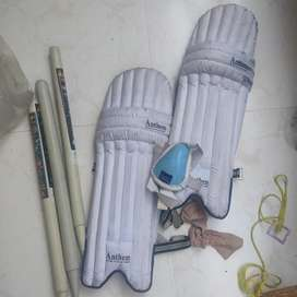 Cricket guard